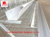 De Kooi van de Apparatuur van het Landbouwbedrijf van het Gevogelte van de kip verkoopt