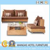 Insieme del sofà del caffè della mobilia del rattan di svago di buona qualità
