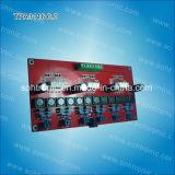 6.0 Module van de Versterker van het kanaal Tpa3116 de Digitale