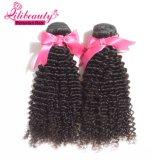 Cabelo humano de preço de grosso que tece o cabelo Curly Kinky dos Peruvian do Virgin