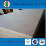 Madera contrachapada de la chapa de Bintangor del grado de BB/CC/madera contrachapada comercial