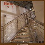 Railing квадрата просто конструкции самомоднейший стальной для крытого (SJ-H820)