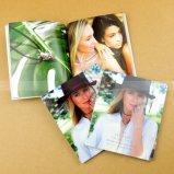 Insectes de brochure de livret explicatif d'impression de catalogue de moitié prix