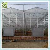 Estufas agriculturais do policarbonato da multi extensão para o vegetal