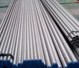 Tubi dell'acciaio inossidabile per la bevanda e l'alimento