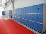 ABS Plastic Storage Locker voor Club