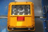 Lighting Emergency per posizione di Hazardous