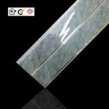 Панель потолка PVC