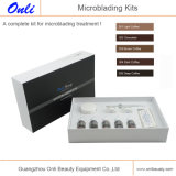 De Uitrustingen van Microblading voor Pigment van Microblading van de Uitrustingen van de Pen van de Schoonheid van de Wenkbrauw van de Make-up Permanet het Hand