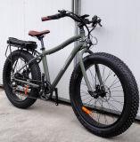 fetter Schnee-elektrisches Fahrrad des Gummireifen-250W mit hinterer Zahnstange