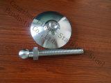 Soem-Edelstahl Bsp Rohrfitting-Teil hergestellt in China