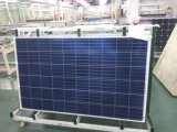 Outstanding Light Relectance Performance 270W Poly Solar Module