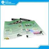 Feuillet Prining en ligne d'insecte de livret explicatif de brochure