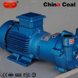 2BV poco costoso Series Water Ring Vacuum Pump