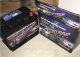 Batterij van de Auto van het Onderhoud 12V75ah van Supervolt DIN75mf de Vrije