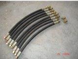 Pièces de rechange de piston d'engine de Jiangdong