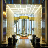 Декоративный лист картины нержавеющей стали вытравливания зеркала для двери лифта
