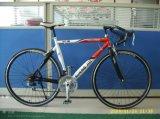 Взрослый велосипед, велосипед 21 спорта скорости стальные/велосипед Sh-Sp002