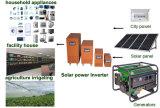 Invertitore di energia solare con il caricatore di CA (PN-3kw)
