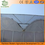 Serre chaude agricole de film plastique de constructeur/plastique résistant UV serre chaude de film de 200 microns