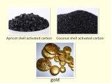 Рафинировка золота угля кокоса активированный раковиной для сбывания