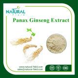 Kräuterauszüge Ginsenoside 80% Panax Ginseng-Auszug-Pflanzenauszug