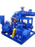 물 반지 진공 펌프가 Jzj2b1200-2.1에 의하여 뿌리박는다