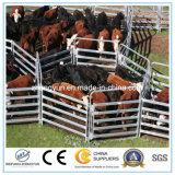 家畜の処理装置の牛ヤードはパネルをはめる