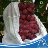 Cubierta Jc-010 de la fruta
