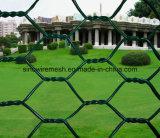 плетение мелкоячеистой сетки PVC зеленого цвета 60X80mm Coated шестиугольное