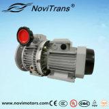 moteur à un aimant permanent à C.A. 0.75kw avec le régulateur de vitesse (YFM-80A/G)