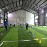Structure en acier Sports Design Design Gym