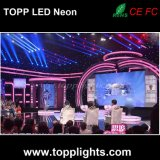 Décoration de bâtiment Flexible High Bright LED Neon Tube Light