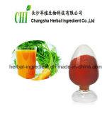 Extracto Beta-Carotene1%~96% natural puro de la raíz de la zanahoria, polvo de Carotin