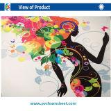 feuille en plastique de PVC de profil de PVC de PVC de 5mm