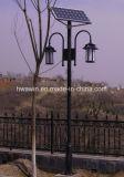 LED-Garten-Solarstraßenlaternemit dem doppelten Arm
