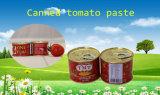 トマトのりイラン