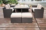 Giardino di vimini Polywood California esterna del patio del rattan che pranza mobilia stabilita (J382)