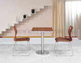 고품질 나무로 되는 카페테리아 테이블 의자 고정되는 Squaretable (NK-DTE328)