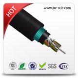 Core 2 Sm Armored fibre optique câble GYTY53