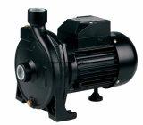 Cpm 시리즈 1HP 관개를 위한 전기 원심 수도 펌프