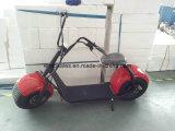 禁止状態にされた電気スクーターを折る最も安いポータブル2の車輪