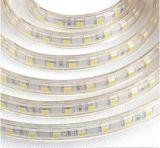 Tira flexible de DC12V/24V 2835/2216/3528/3014/5050/5730 LED con IP68 la protuberancia Silicione