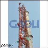 Grua dobro da construção das gaiolas de Gaoli Sc200/200