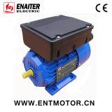 감응작용 단일 위상 전기 모터