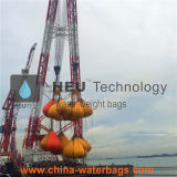 De Zakken van het Gewicht van het Water van de Test van de Lading van de Leverancier van China