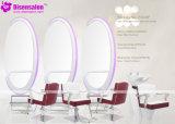 شعبيّة [هيغقوليتي] صالون أثاث لازم مرآة حلّاق صالون كرسي تثبيت ([2035])