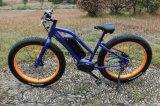 Bafang MID Motor Fat Tire Mountain Electric Bike