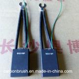 Manufacturering verschiedene Standardgrößen Z.B. der 319P Kohlebürste mit almar Signalader
