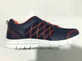 Nieuw Meer Schoenen van /Comfort van de Schoenen van de Sporten van het Meisje van de Jongen van Verfhandelaars/van Vrouwen